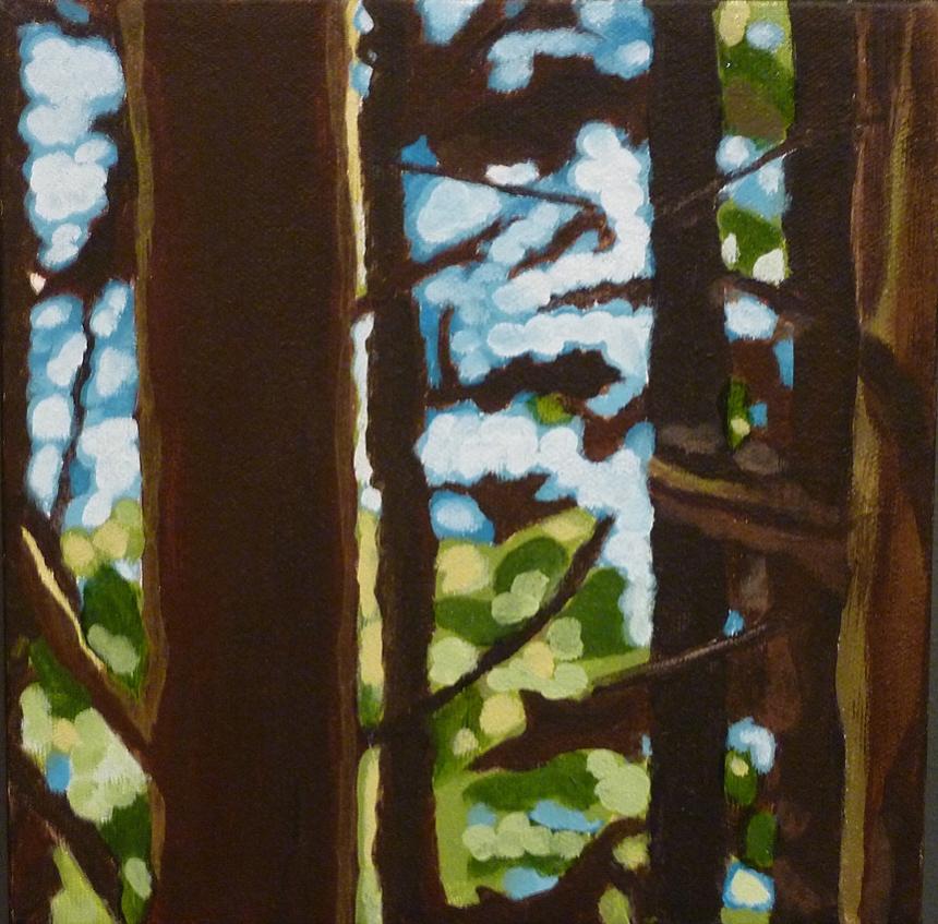 forest (emerge)